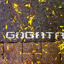 (Deutsch) Blühende Bäume bei der GoGaTa 2012